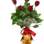 kirmizi-guzel-ve-ayicikli güller
