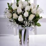kocaeli beyaz güller