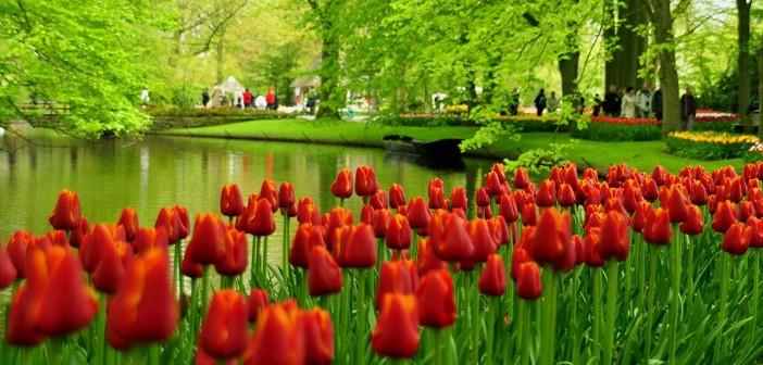 Photo of Çiçek ve Çiçekçilik Tarihi