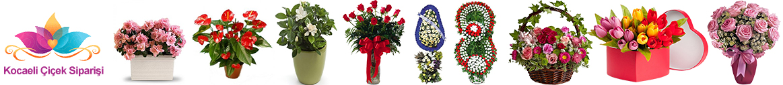 Kocaeli Çiçek Sipariş Hattı- İzmit Çiçekçi : 0262 606 0767